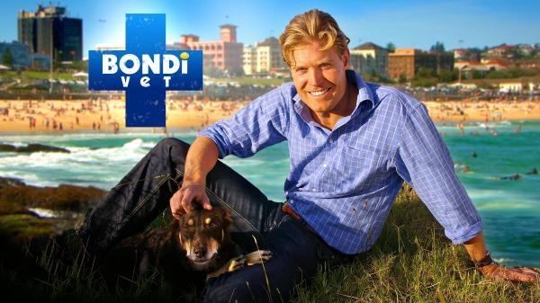 Veterinář z Bondi Beach
