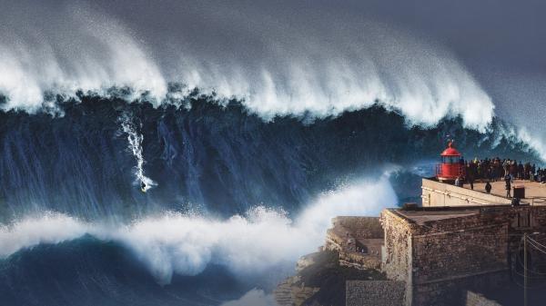 Životní vlna