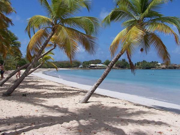 Kurs Karibské ostrovy